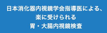 日本消化器内視鏡学会指導医による、楽に受けられる胃・大腸内視鏡検査